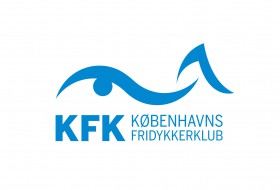 005_1725_WP_Logo